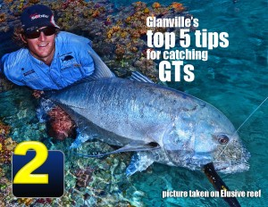 Top-tips-catching-gts2